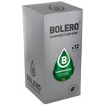Bolero Drinks Waldmeister 12er