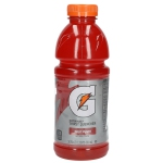 Gatorade Fruit Punch USA 591ml
