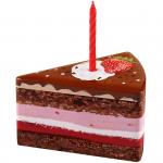 Heidel Geburtstagstorte 64g