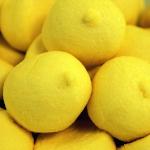 Mellow Mellow Speckbälle gelb 1kg