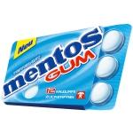mentos Gum Peppermint 12er zuckerfrei