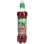 Punica Abenteuer Drink Apfel-Erdbeere 500ml
