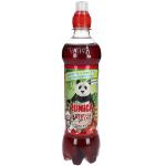 Punica Abenteuer Drink Apfel-Kirsch 500ml
