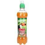Punica Abenteuer Drink Multifrucht 500ml