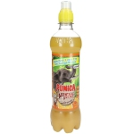 Punica Abenteuer Drink Orange 500ml