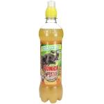 Punica Abenteuer Drink Orange 500ml