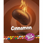 The Jelly Bean Factory Gourmet Cinnamon 100g
