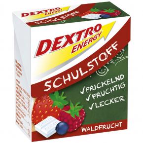 Dextro Energy Schulstoff Waldfrucht 50g