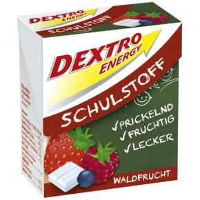 Dextro Energy Schulstoff Waldfrucht