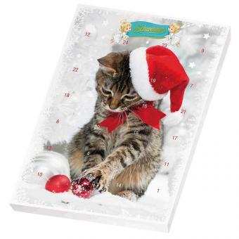 Schwermer Kinder Adventskalender Katze