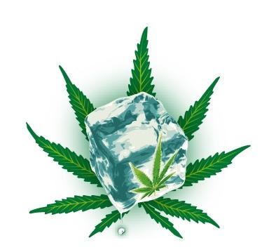 Chronic Ice